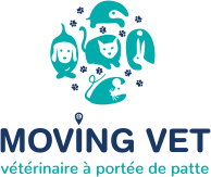 MOVING VET