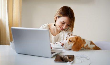 Consultation avec un vétérinaire d'urgence en appel Visio Dijon